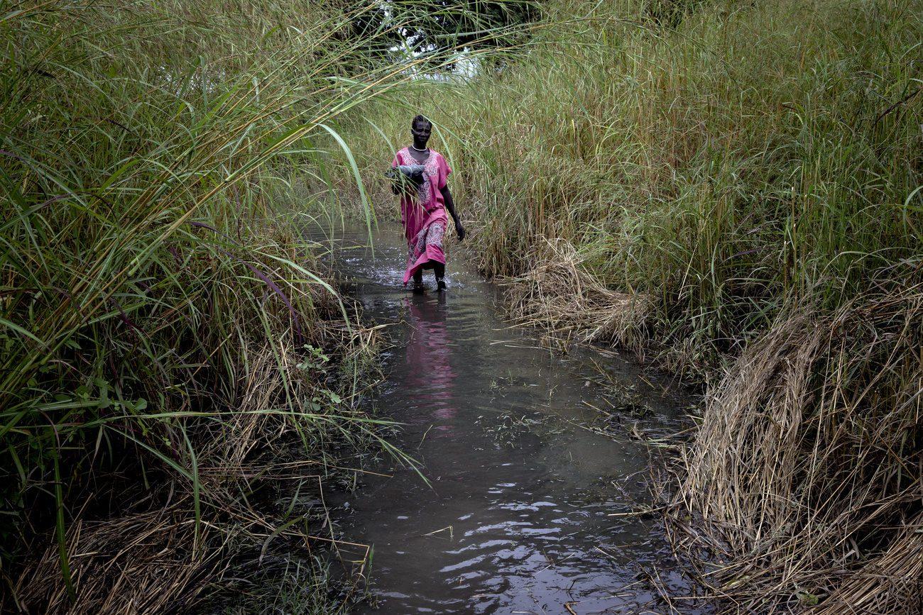 Une femme marche sur un chemin inondé dans le village de Dijeri